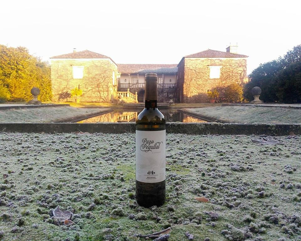 Pazo Pegullal at America Wines Paper