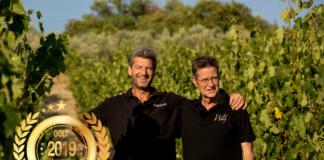 WHWinery America Wines Paper