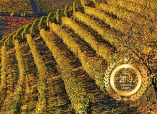 Collina Serragrilli at America WInes Paper