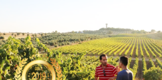 Quinta Monteiro de Matos at America Wines Paper