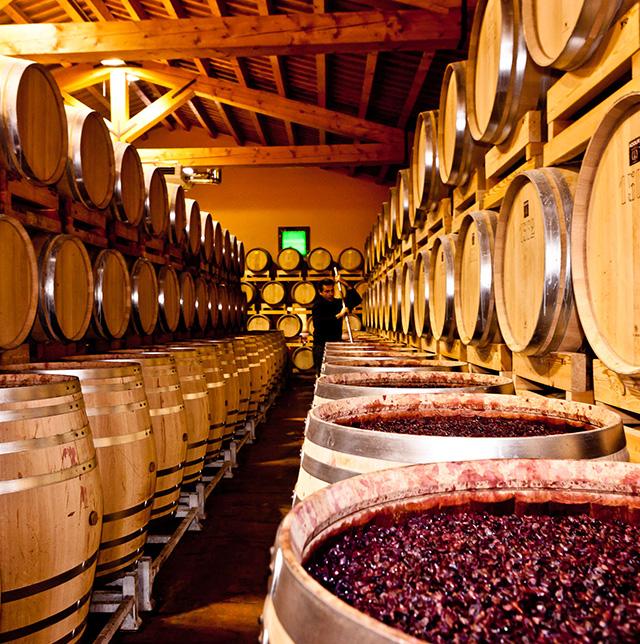 Tenuta Sant' Antonio at America Wines Paper