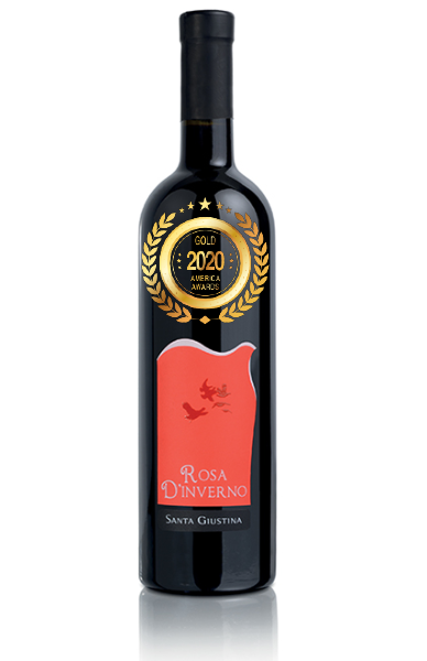 Rosa d'Inverno at America Wines Paper